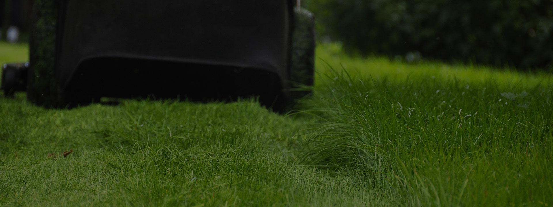 tracteur tondeuse pour tondre votre pelouse