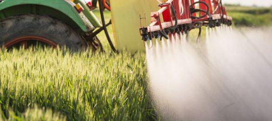 Pièce agricole